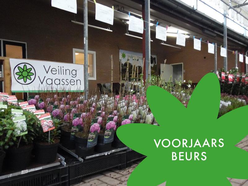 Voorjaarsbeurs Veiling Vaassen