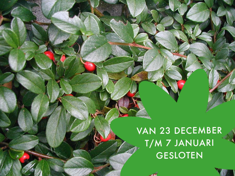 Feestdagen: 23 december t/m 7 januari gesloten